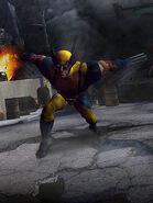 Wolverineq