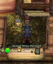GeneralStoreMerchant(Candyvault)