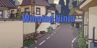 The Winning Ninja