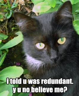 Redundant298