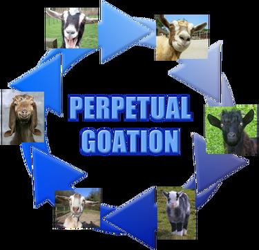 PerpetualGoation