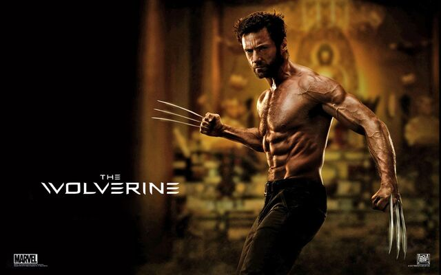 File:The wolverine 2013 movie-wide-1-.jpg