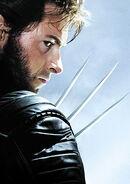 Wolverine 08