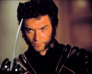 Wolverine 10