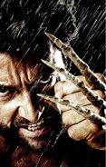 Wolverine 03