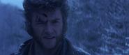 Logan the Wolverine (X-Men 2000)