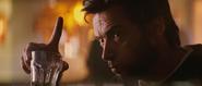 Wolverine5-XMFC