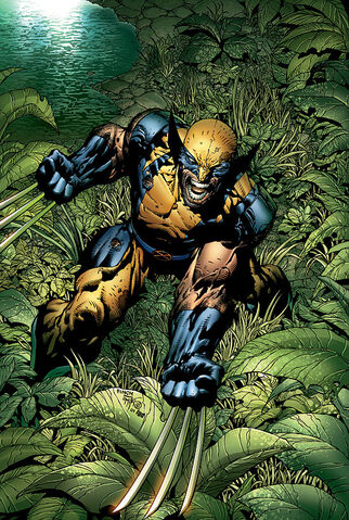 File:Wolverine by David Finch.jpg