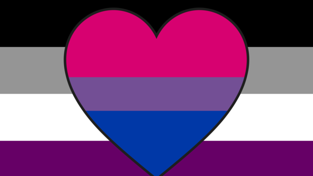 File:Asexual biromantic.png