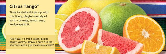 File:20150906 Citrus Tango Banner yankeecandle com.jpg