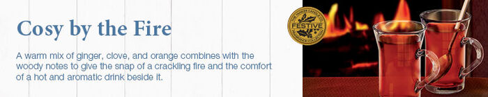 20150905 Cosy By The Fire banner yankeecandle co uk