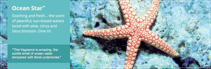 20150906 Ocean Star Banner yankeecandle com