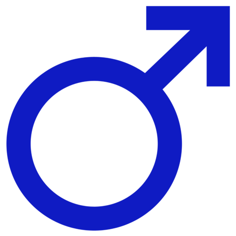 File:480px-Male.png