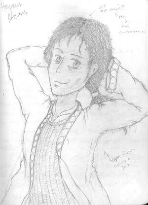 Haymich drawing