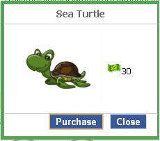 File:Sea turtle.JPG