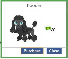 File:Poodle.JPG