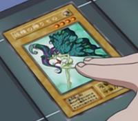 FairysGift-JP-Anime-DM