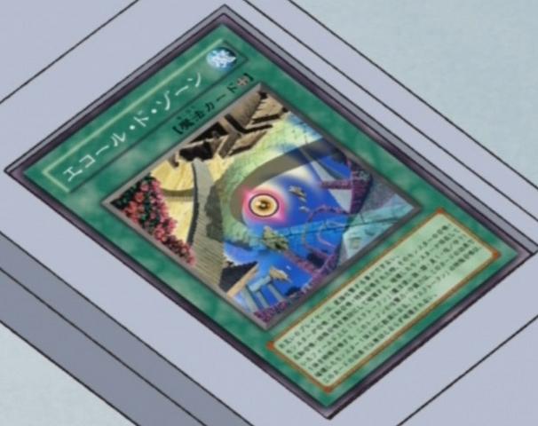 File:EcoledeZone-JP-Anime-5D.png