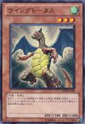 Wingtortoise-GENF-JP-C
