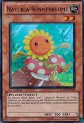 NaturiaSunflower-HA03-DE-SR-1E