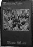 File:Number61Volcasaurus-JP-Manga-ZX.png