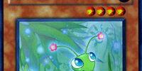 Naturia Mantis