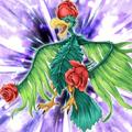 BirdofRoses-TF05-JP-VG.png