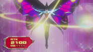 PhotonPapilloperative-JP-Anime-ZX-NC