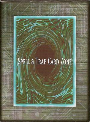 Spell&TrapCardZone5DS1