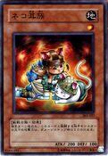 CatsEarTribe-303-JP-NR