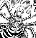Desert Trapdoor Spider MW close-up