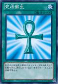 MonsterReborn-15AY-JP-C-B
