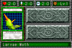 File:LarvaeMoth-DDM-EN-VG.png