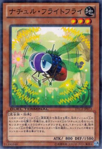 File:NaturiaFruitfly-DTC2-JP-DNPR-DT.jpg