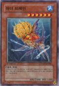 CraniumFish-EXP1-KR-C-1E