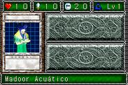 AquaMadoor-DDM-SP-VG