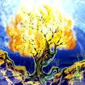 BurningAlgae-TF04-JP-VG