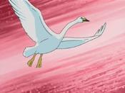 SwanMaiden-JP-Anime-DM-NC