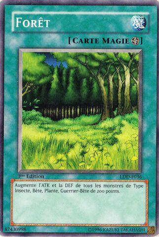 File:Forest-LDD-FR-C-1E.jpg