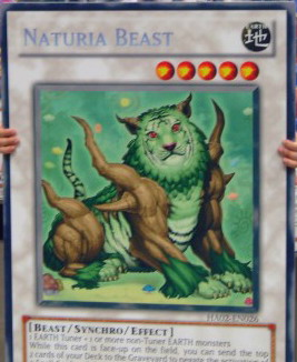 File:NaturiaBeast-HA02-EN-ScR-UE-GC.jpg