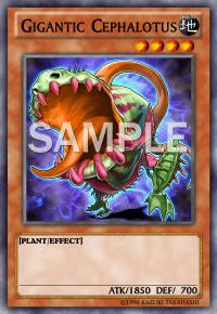 File:GiganticCephalotus-EN-SAMPLE.png
