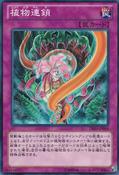 PlantFoodChain-DE03-JP-C