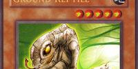 Ground Reptile