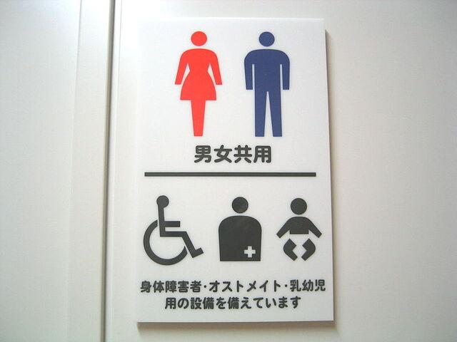 File:Japanese toilet sign.jpg