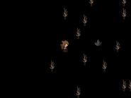 MoonScrn078