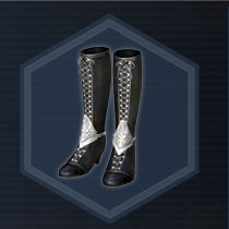 Formal ware boots f