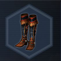 Cowgirls boots p