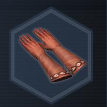 Garden Gloves P