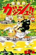 Cover10 jap