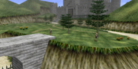 Castle Grounds